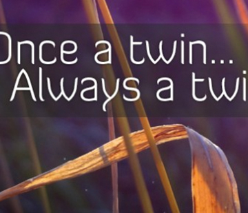 Twinless Twins Website